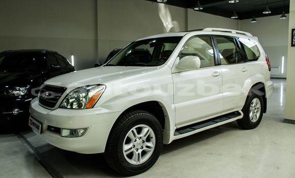 Buy Used Lexus LX White Car in Tashkent in Toskent