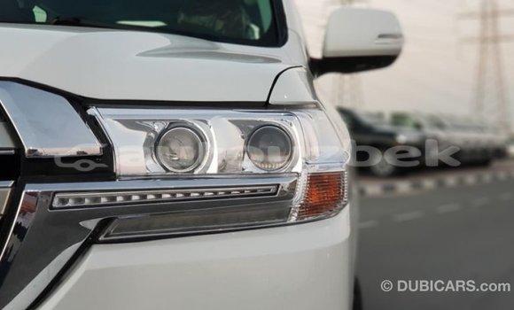 Buy Import Toyota Land Cruiser White Car in Import - Dubai in Andijon
