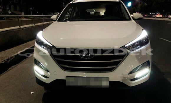 Buy Used Hyundai Tucson White Car in Tashkent in Toskent